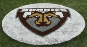 indoor turf logos