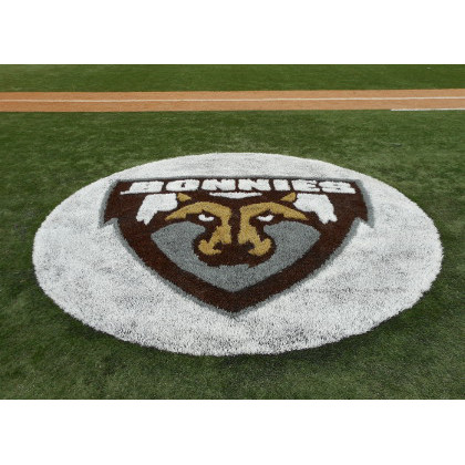 Artificial Turf Logo and Design
